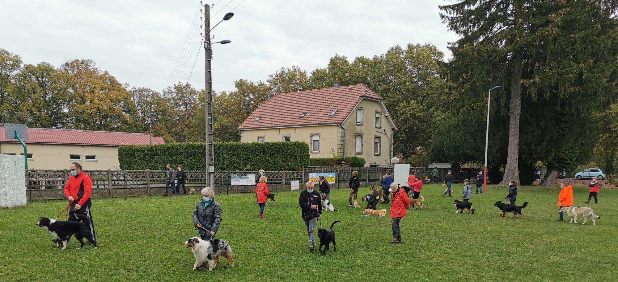 Club d'Education Canine de Valentigney